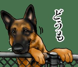 Mr. shepherd 3 Police dog Real style. sticker #13346824