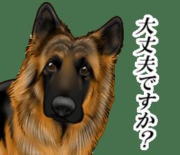 Mr. shepherd 3 Police dog Real style. sticker #13346830