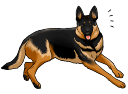 Mr. shepherd 3 Police dog Real style. sticker #13346831