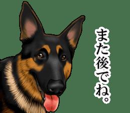 Mr. shepherd 3 Police dog Real style. sticker #13346838