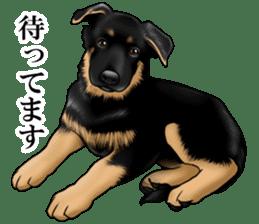 Mr. shepherd 3 Police dog Real style. sticker #13346839