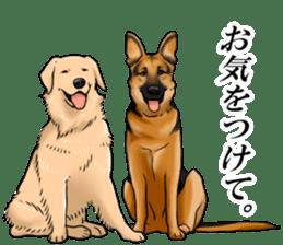 Mr. shepherd 3 Police dog Real style. sticker #13346843