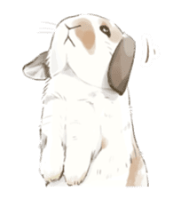 Taremimi rabbit mix! sticker #13359542
