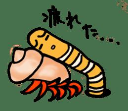 Spotted garden eel and Hermit crab sticker #13363947
