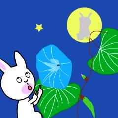 Daily life of cute rabbit no2.