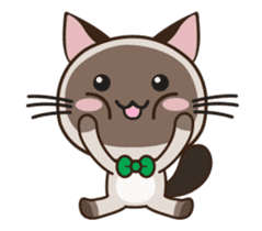 Chokdee Cute Cat DukDik1 sticker #13423500