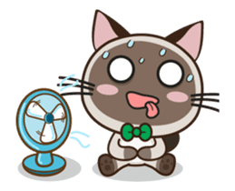 Chokdee Cute Cat DukDik1 sticker #13423507