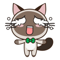 Chokdee Cute Cat DukDik1 sticker #13423512