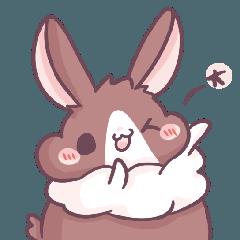 Bunny-Caramel