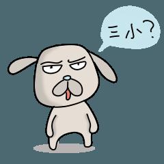 angry old dog