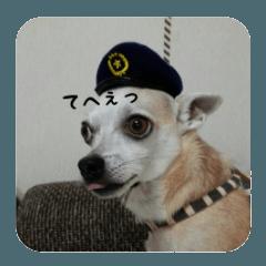 nari sticker
