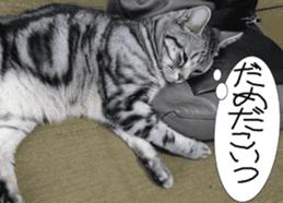 Instead tell the cat sticker #13489944