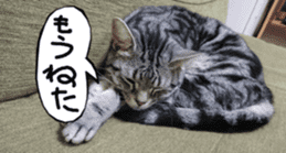 Instead tell the cat sticker #13489946