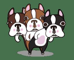 Animated Boston Terrier sticker #13501342