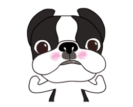Animated Boston Terrier sticker #13501349