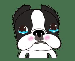 Animated Boston Terrier sticker #13501354
