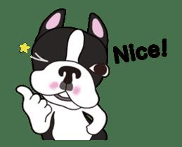 Animated Boston Terrier sticker #13501360