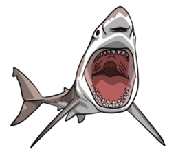 sexy shark boy sticker #13507037