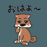 สติ๊กเกอร์ไลน์ Shiba Inu's move