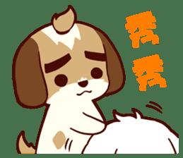 2 Shih Tzu Brothers V.2-Cheer Up! sticker #13523791