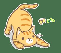 tora-neko-kun sticker #13539201