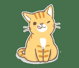 tora-neko-kun sticker #13539203
