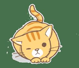 tora-neko-kun sticker #13539207