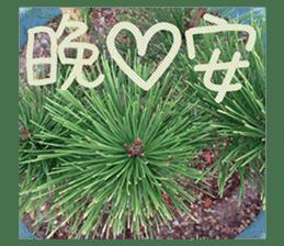 plant x 1995 sticker #13569016