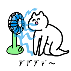 The cat called Yoshio