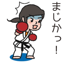 One frame with a karate friends 2 sticker #13597100