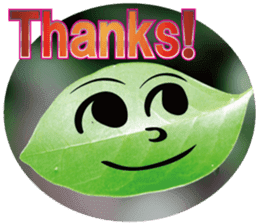 Chatting leaves sticker #13599071