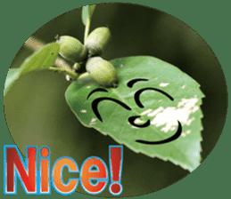 Chatting leaves sticker #13599072