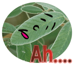 Chatting leaves sticker #13599080