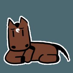 Q horse 2