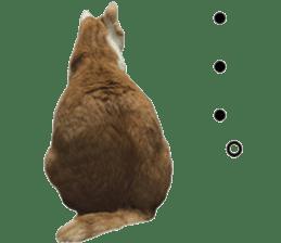 Iemitsu of the fatty cat sticker #13634014