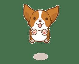 Corgi Dog Kaka - animated sticker vol. 1 sticker #13634542