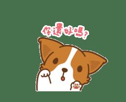 Corgi Dog Kaka - animated sticker vol. 1 sticker #13634544