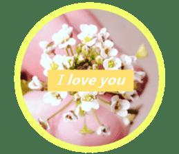 FLOWER MESSAGE(photo) sticker #13638280