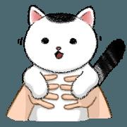 สติ๊กเกอร์ไลน์ แมวหัวกลม : มารุคุง