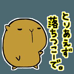 長崎県のカピバラ その5