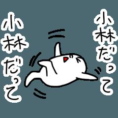Kobayashi is incompetent