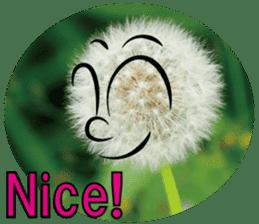 Kind nature sticker #13720160
