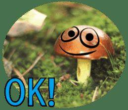 Kind nature sticker #13720165