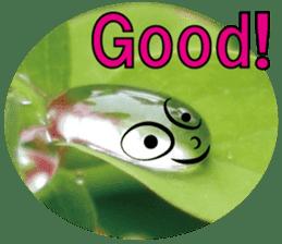 Kind nature sticker #13720168