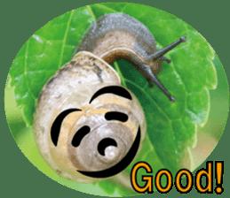 Kind nature sticker #13720170