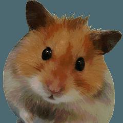 Golden Hamster~MoMoJai~(Eng ver.)
