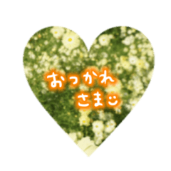 photo flower sticker