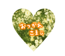 photo flower sticker sticker #13731185