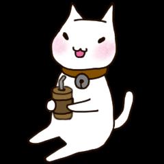 A white cat Goni.