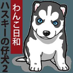 Wanko-Biyori Puppy of Siberian husky 2